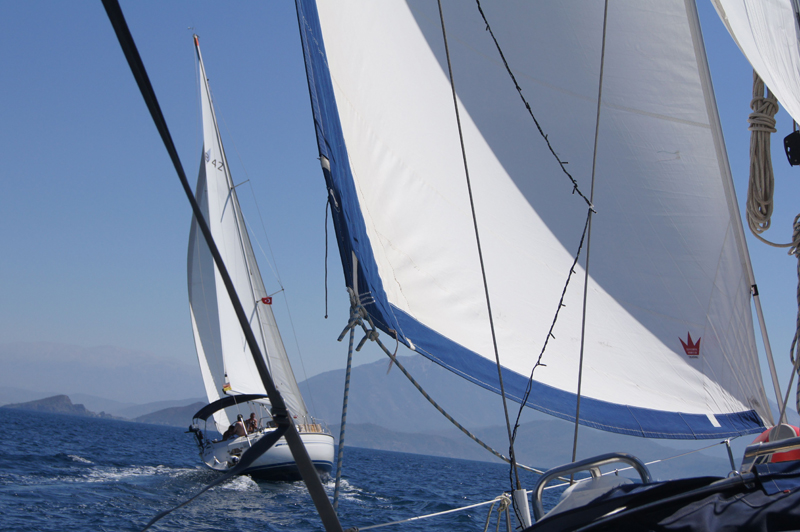 Competition-Sailing